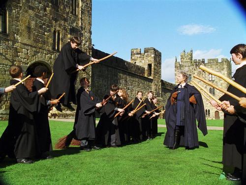 哈利·波特与魔法石Harry Potter and the Sorcerer's Stone(2001)剧照 #19