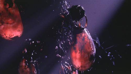由《源代码》闲谈邓肯·琼斯 ——硬科幻、软科幻、伪科幻? - 基督山伯爵 - 被撕裂的帷幕
