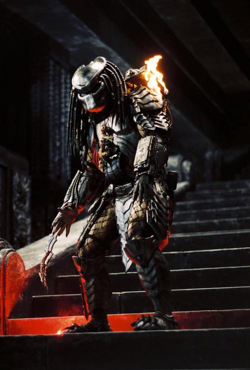 异形大战铁血战士