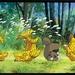 百变狸猫 11