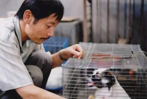 卡拉是条狗Cala, My Dog 2003