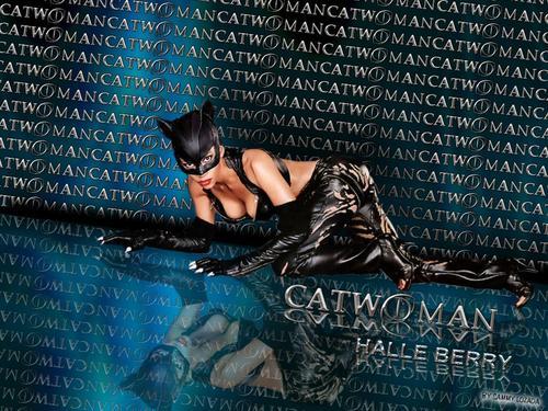 猫女Catwoman 2004 05B