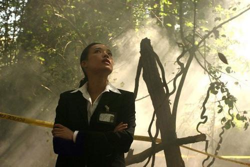 森冤Forest of Death 2007 14